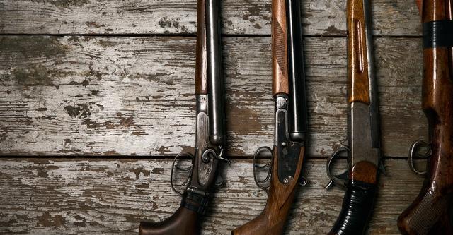 Chiappa Guns