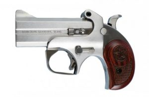 Derringer Firearms