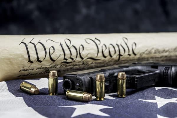 Phoenix Arms Guns