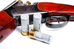 Pro Hunter Pistol