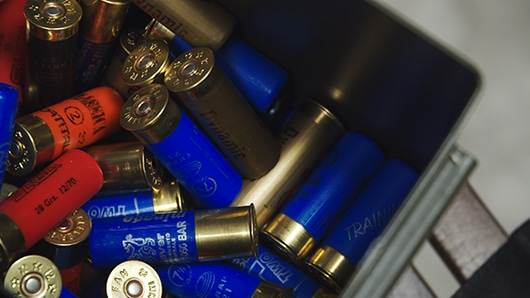 Ammunition for Bird Hunting
