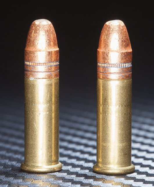 .22 Long Rifle Ammo
